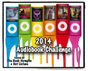 2014-Audio-Challenge